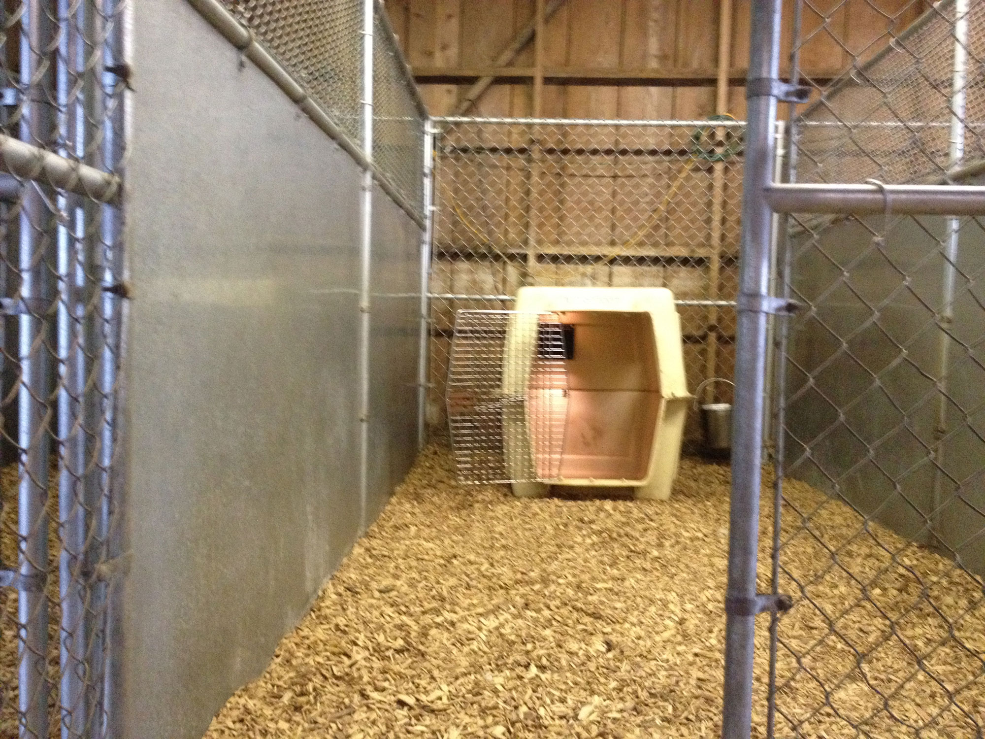private 6x12 foot dog kennels