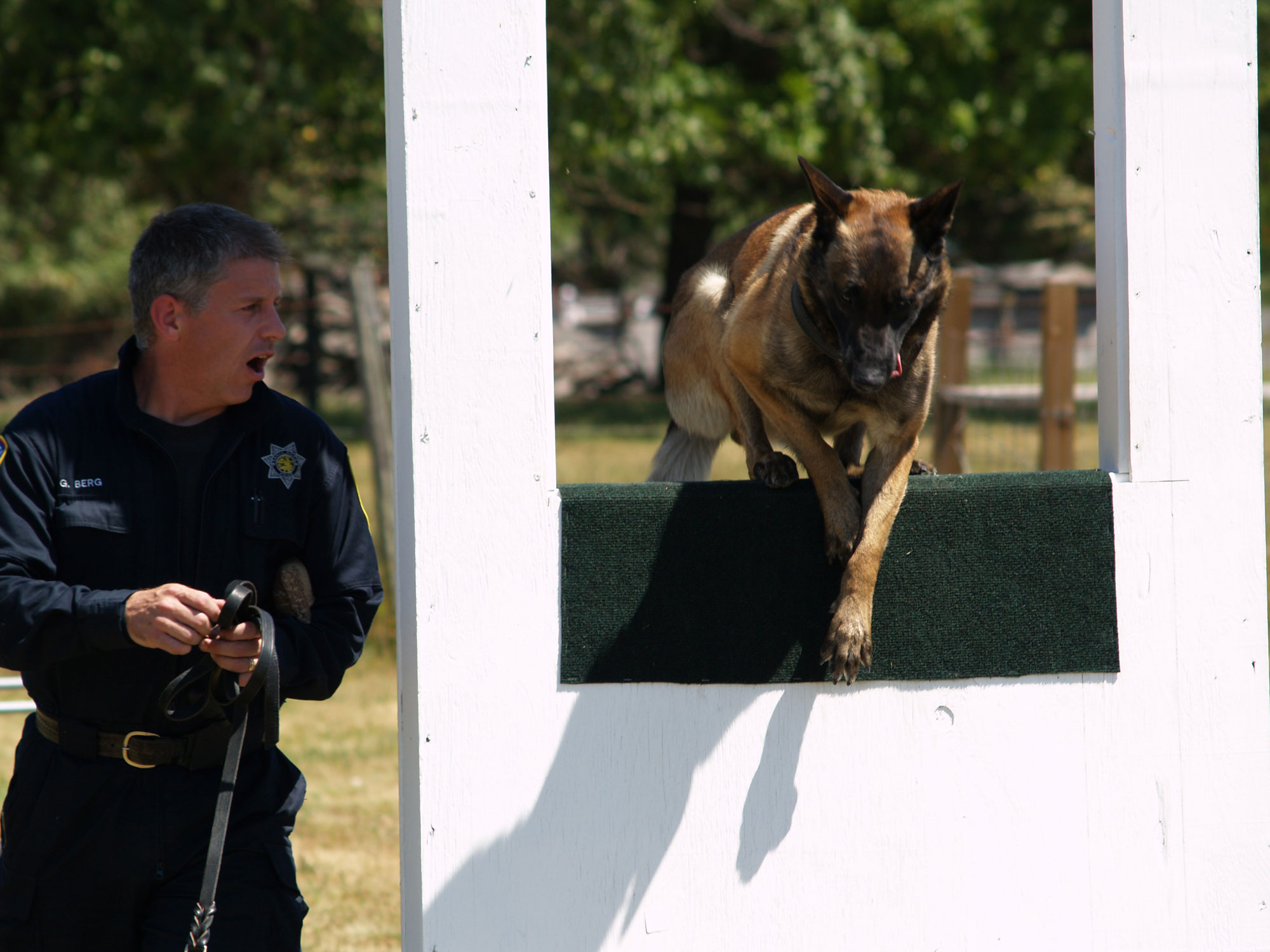 police k9 dog training